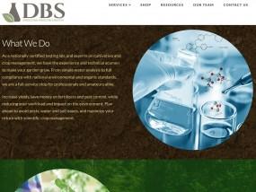 DBS web